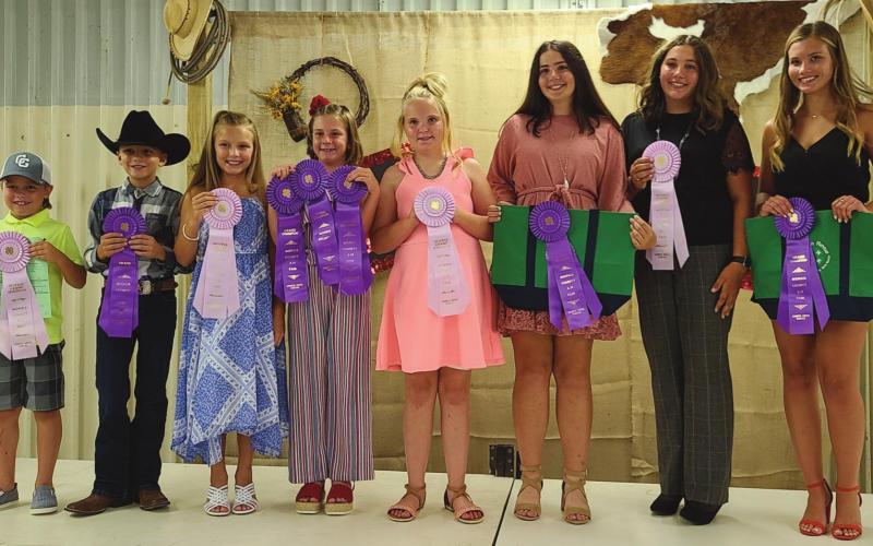 Fashion Revue Winners At Morris County Fair