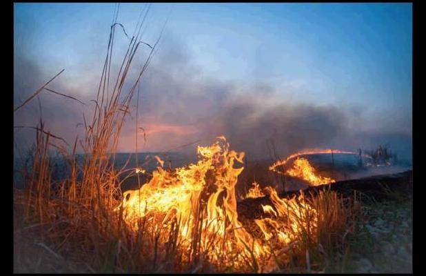 BURNING SEASON -- Callahan McIver of Council Grove received honorable mention in the 2019 RTK Photo Contest for his photograph of the Flint Hills during burning season.